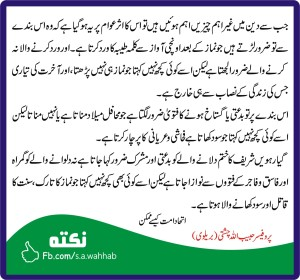 pro-habibullah-chishti-ittehad-e-ummat